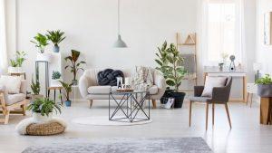 location-meublee-courte-longue-duree-investissement