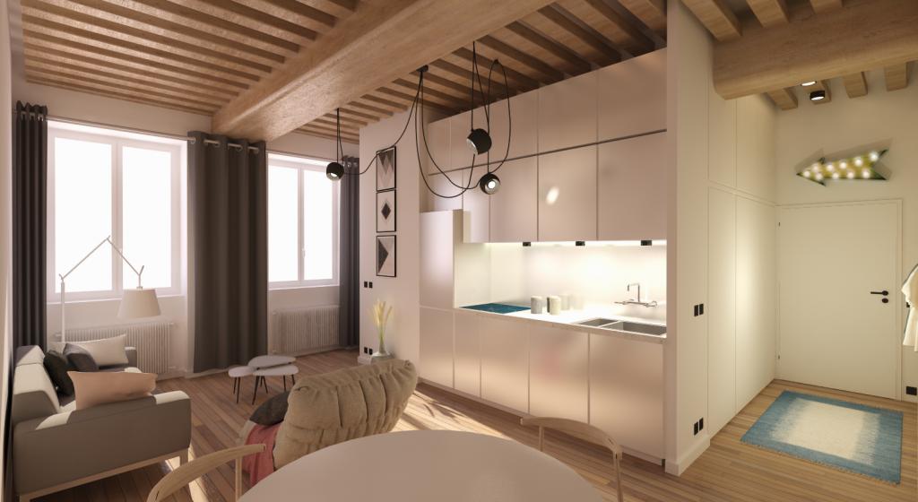 appartement lyon 1 interieur cuisine piece de vieprogramme lmnp