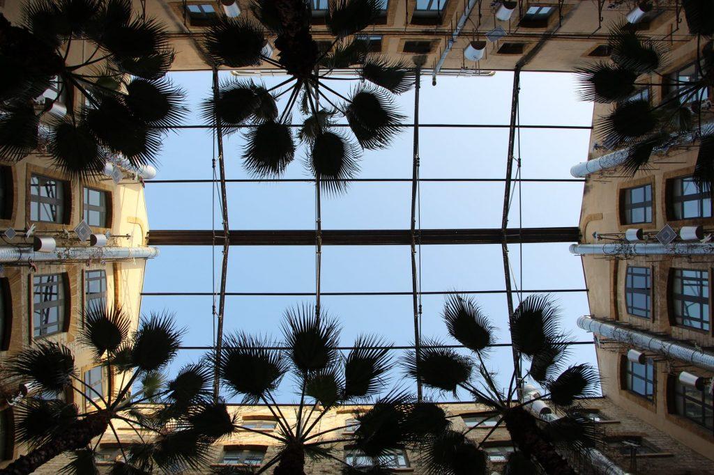 achat appartement marseille immeuble cour ciel bleu palmier